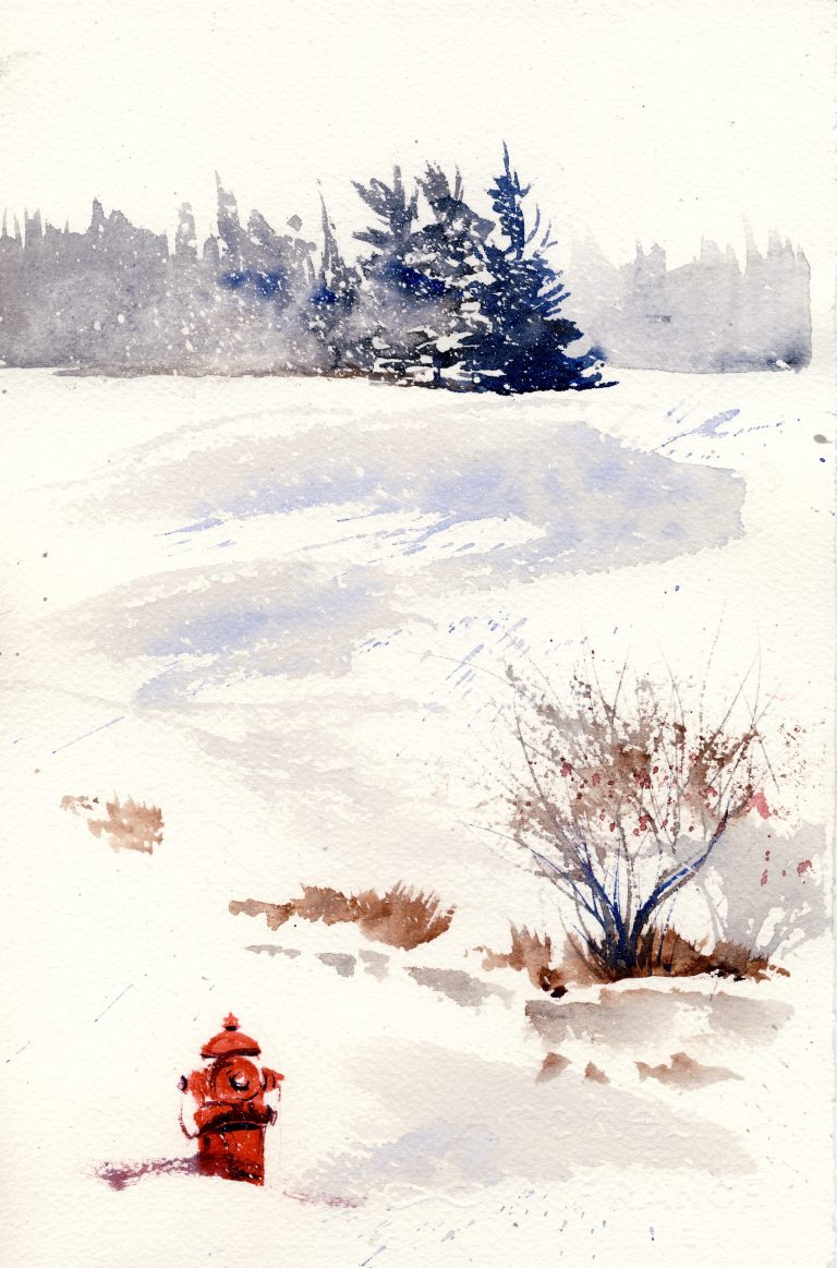 A snowscape watercolor with a fire hydrant and spruce trees to illustrate the openness of the Center grounds.